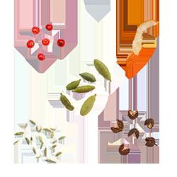 Bouquet Garni Poissons et Fruits de Mer