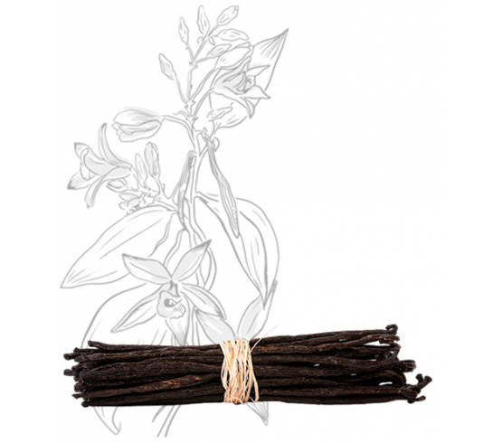 30 gousses - Vanille Bourbon de Madagascar – Gourmet & Bio