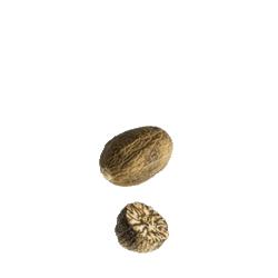 Noix de Muscade du Sri Lanka