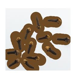 Clou de Girofle Bio de Madagascar