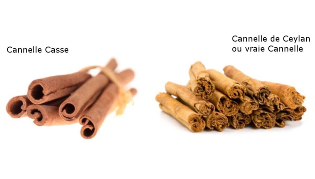 Connaissez-vous la différence entre la Cannelle de Ceylan et la Cannelle Casse ?
