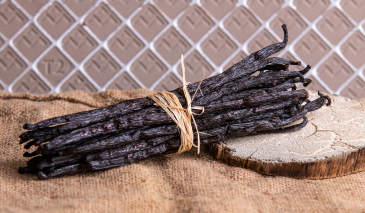 Usage, conservation, cuisine de la Vanille